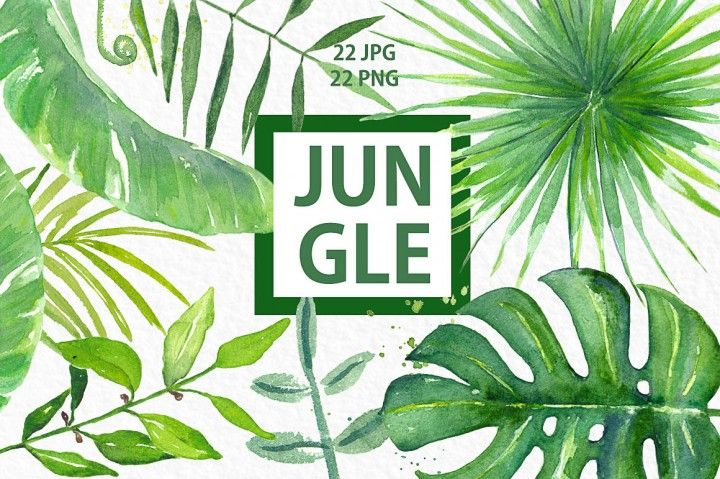 Jungle. Tropical green branches, leaves and orange flowers. Watercolor clip art hand drawn. Light green and bright green branches, wedding invitation. Romantic and tender composition with watercolour leaves. Wedding clip art. Ideal for fine art photography, logo and blog and wedding invitations. This hand drawn floral watercolor is ideal for use in your digital creations such as card template designs, for your logo, on your blog, invitations, digital projects, sites, scrapbooking, wedding…