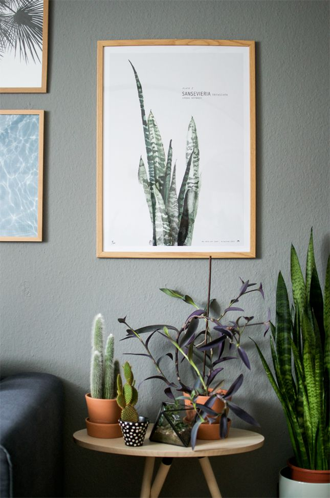 Urban Jungle Bloggers: Plants & Art by Happy Interior Blog: