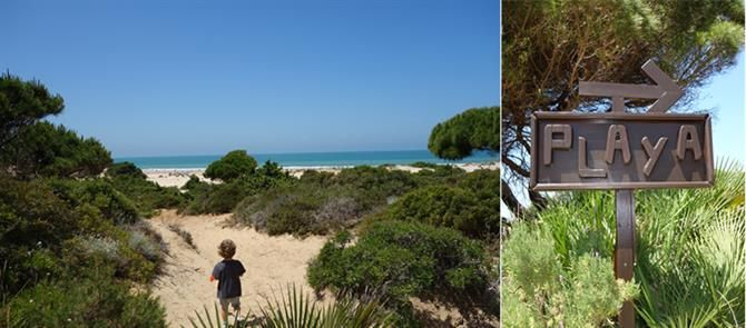 Playa Sancti Petri, Cadix - Costa de la Luz (Espagne)