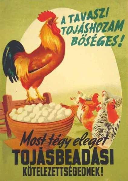 Most tégy eleget tojásbeadási kötelezettségednek! szocreál plakát