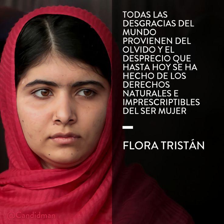 Todas las desgracias del mundo provienen del olvido y el desprecio que hasta hoy se ha hecho de los derechos naturales e imprescriptibles del ser mujer - Flora Tristán