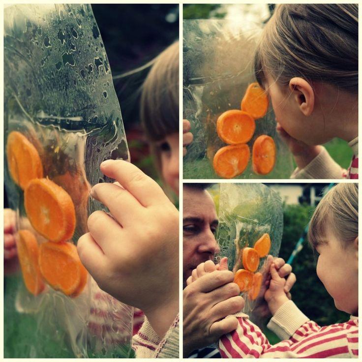 sliced fruit in sealed laminate sheets  #abcdoes #eyfs #earlyyears #preschoolideas