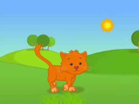 Sunny the Cat Cartoon - Helen Doron Baby's Best Start