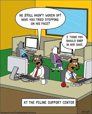 Mystery Fanfare: Cartoon of the Day: Feline Support Center