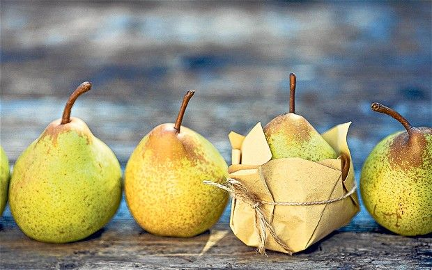 pears in the autumn