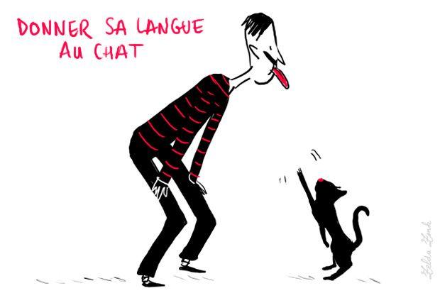 Donner sa langue au chat : renoncer à deviner, à trouver la solution