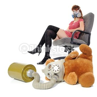 Search for Stock Photos of Bear, Safety on Thinkstock