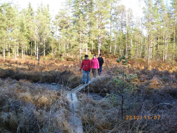 Glasbyn Målerås - omgivning/ Crystal village Målerås hiking in Småland