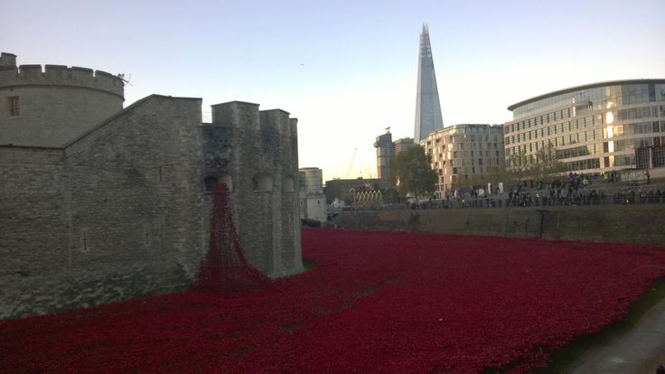 Beautiful and touching. Visiting the poppies installation at the Tower of London for Armistice Day.