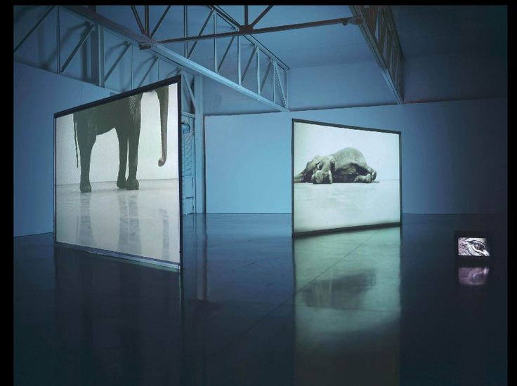 Size:  In this picture they show TV's going from big to small that is how size is shown through art. Artist: Douglas Gordon