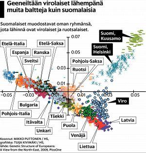 Kuinka läheistä sukua suomalaiset ja virolaiset ovat? Testaa, tunnistatko naapurimaiden asukkaat   Tiede   HS