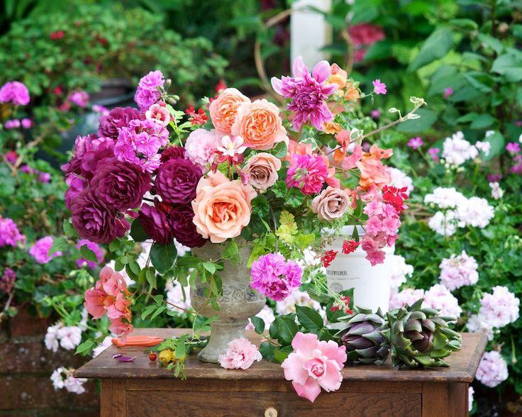 Garden Series: Summer Blooms - Tulipina: