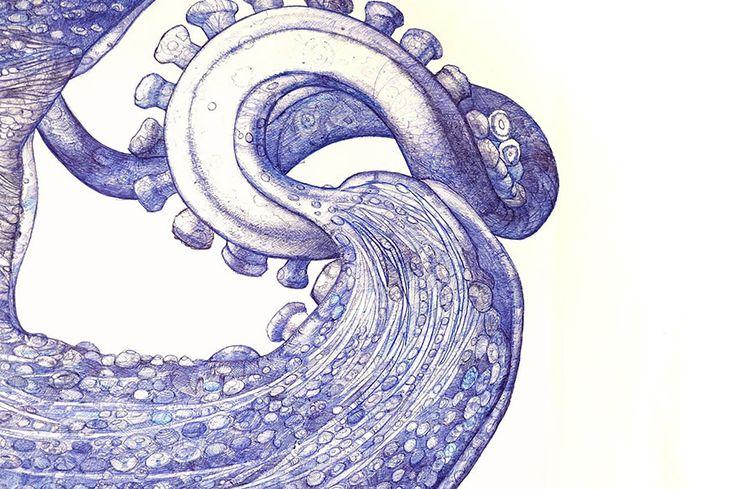 Raymond Cicin a dessiné une immense pieuvre avec de vieux stylos à bille  Dessein de dessin