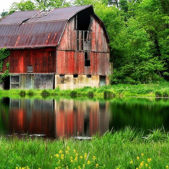 "Red Barn ~ ""Reflections"" ~ Photography by Nadya Johnson ~ Country Living ~"