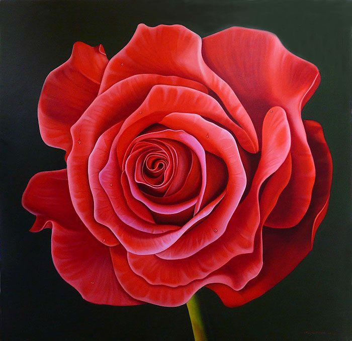 #Rosa #Flor #ExpoArtistas #GaleríaBortot