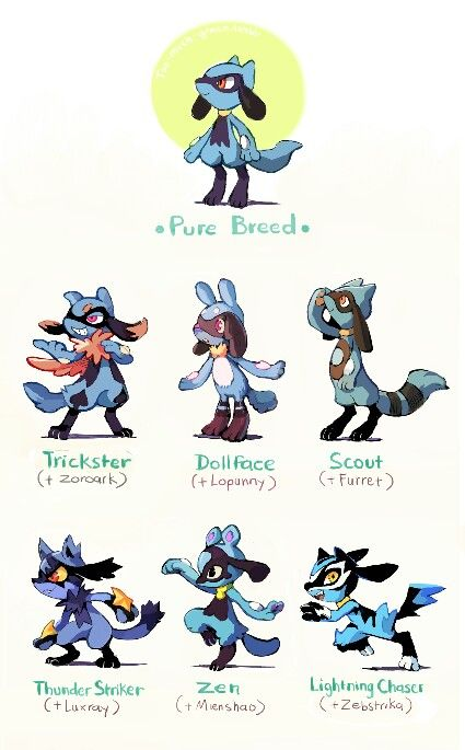 Admin: Pokemon variations, I like all but doll face DX KO: This is cool