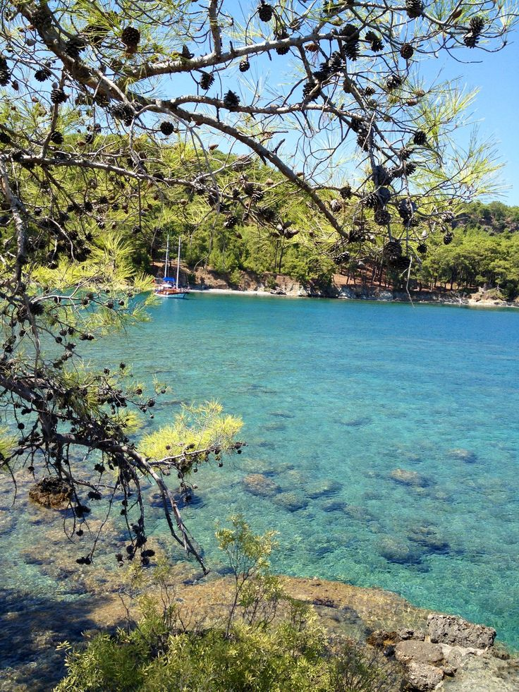 Kemer Turkey, been there- to swim with big turtles in the crystal clear sea