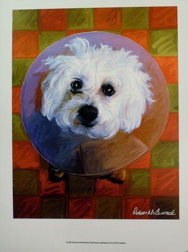 $19.99  DOG Pets ART Print Bichon BY Robert Mcclintock   eBay #dog #pets #walldecor