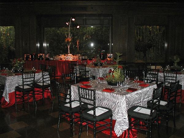 26 best redblack wedding decorations images on pinterest red jalisa erick washington zebra wedding junglespirit Images