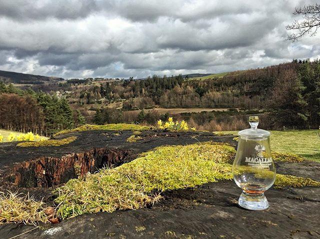 The view from Easter Elchies home of @the_macallan in Speyside After an unforgettable private tasting session we were out enjoying our The Macallan Fine Oak 25 enjoying the Spey River. #MapMyMacallan #TheMacallan #Whisky #Scotch  Bu fotoğraf The Macallan damıtımevi ziyaretimizden. Macallan'ın merkezi Easter Elchies'de (şişelerin üstündeki bina) gerçekleştirdiğimiz özel bir tadım sonrası bahçedeyiz kadehlerimizdeki The Macallan Fine Oak 25'i Spey nehrinin harika manzarasına karşı…