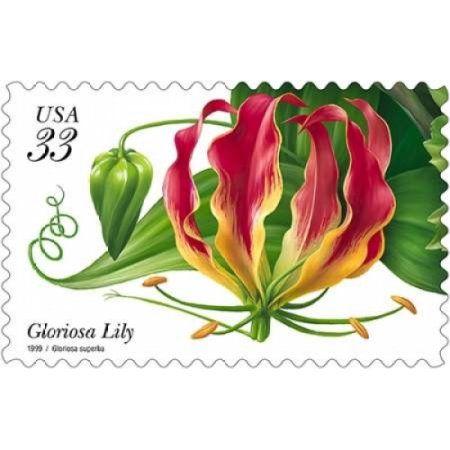 Gloriosa Lily Canvas Art - US Postal Service (12 x 18)