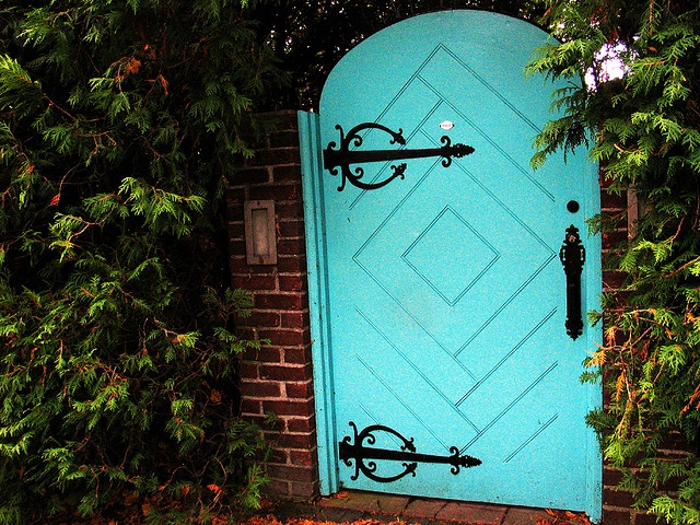 Door pattern, color, hardware, mail slot...basically everything.