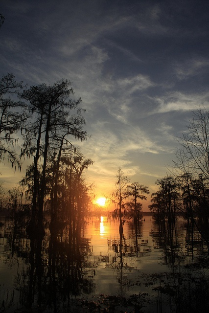 Lake Martin Sunset by LSUgusto, via Flickr