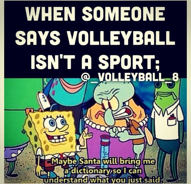 let me see. OH WAIT IT SAYS THAT VOLLEY BALL IS A SPORT IN THE DICTIONARY DUMMY!