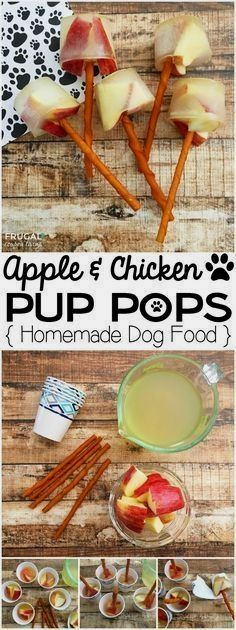 Apple & Chicken Pup Pops | Homemade Dog Food on Frugal Coupon Living