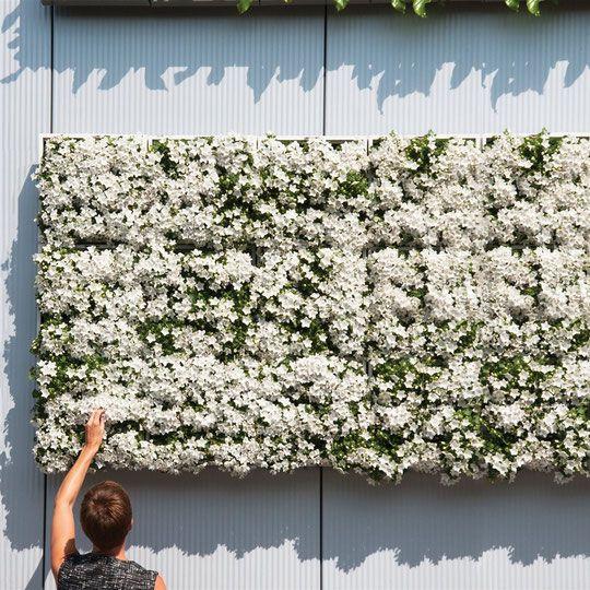 verticale moestuin, verticale plantenbak, mini garden