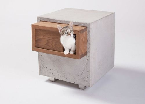 architects design cat shelters
