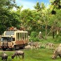 Exotic Bali Tour Package 5 Nights 6 Days