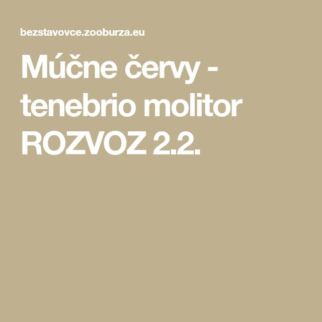 Múčne červy - tenebrio molitor ROZVOZ 2.2.