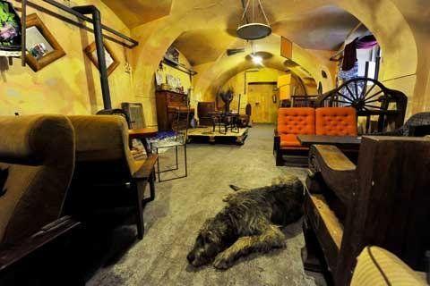 Introducing Vzorkovna - Restaurants - Night & Day - The Prague Post - Cheap interesting bar in the city center.