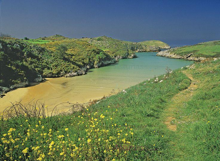 Playa de Poo. En Poo está la playa del mismo nombre. Forma una especie de lengua de arena que va encajada en el terreno y se introduce en el mar. En marea alta gran parte de ese brazo es inundado por el agua.
