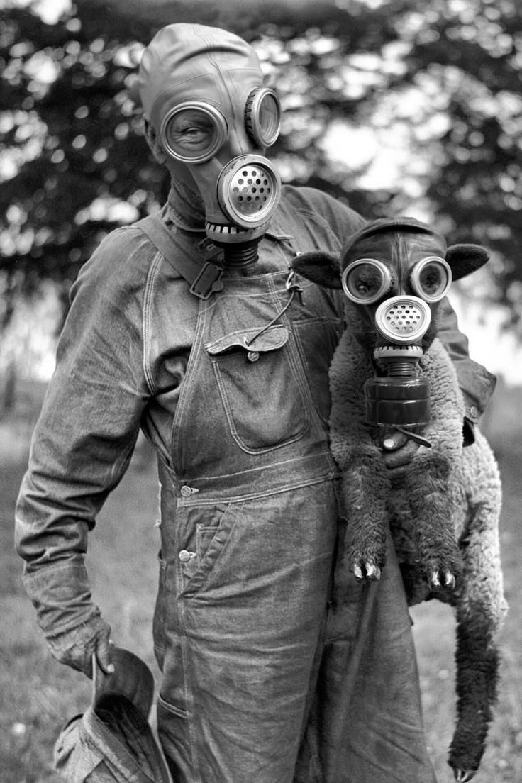 Pin on The End of History Gas Mask Art