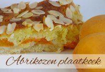 Abrikozen plaatkoek