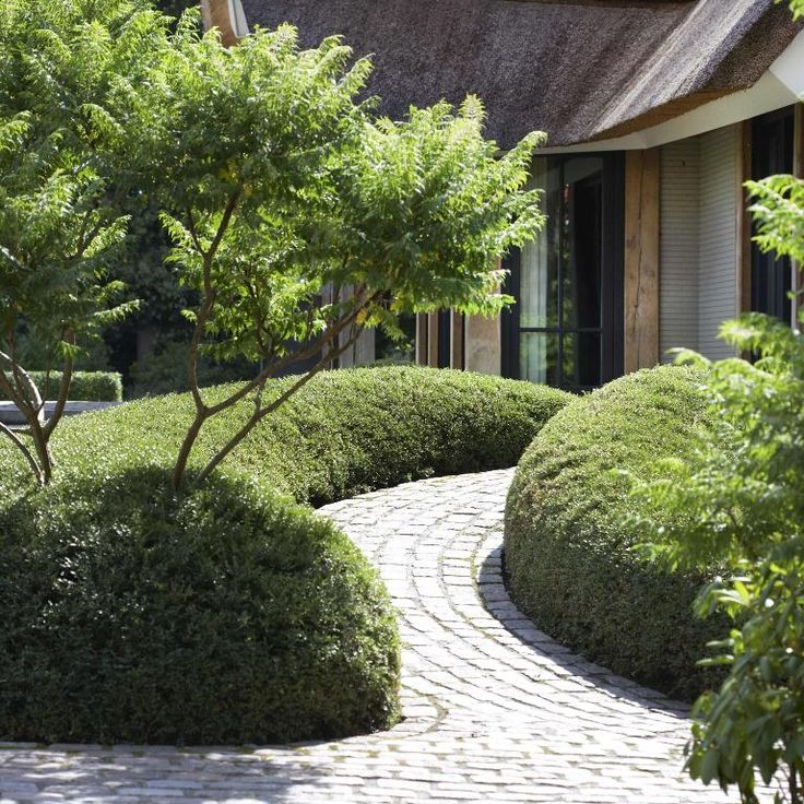 Strong structure created with planting in a semi-round shape