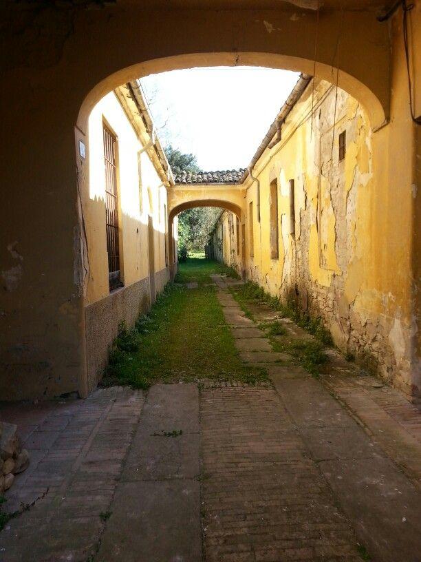 Vecchia casa / Sala Baganza / Italia