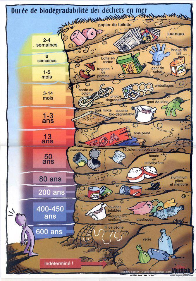 [Illustration] La durée de biodégradabilité des déchets en mer #mer #pollution @surfridereurope