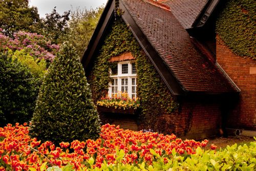 wow: Dreams Houses, Country Houses, Beautiful Houses, Little Houses, Color, Dublin Ireland, Places, Gingerbread Houses, Little Cottages