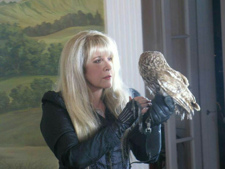 a lovely photo of Stevie ~ ☆♥❤♥☆ ~ holding an owl in her gloved left hand; as well as a super star rock queen, Stevie also seems to be an 'owl whisperer'