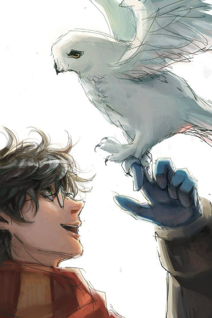 Love this!!!! it brings out the real Harry and hedwig