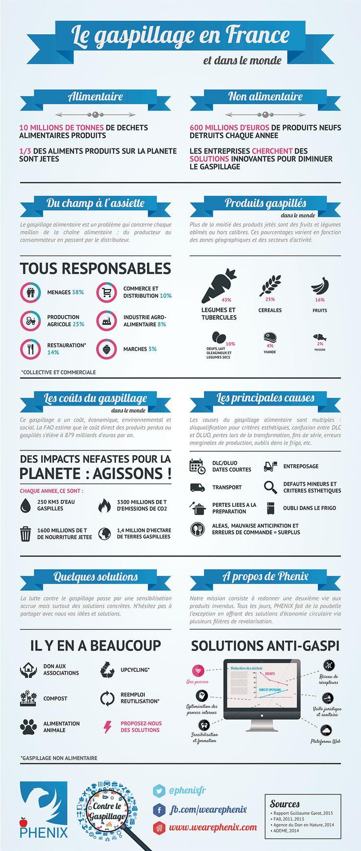 Phenix evolution tarif elegant prix maison phenix with for Tarif extension