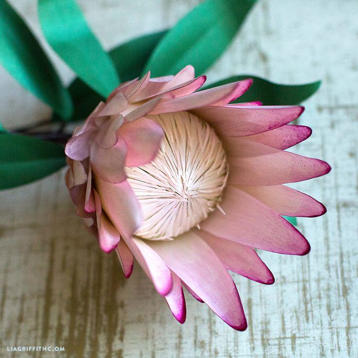 Paper Protea Flower