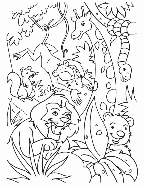 Printable Jungle Scene Coloring Pages