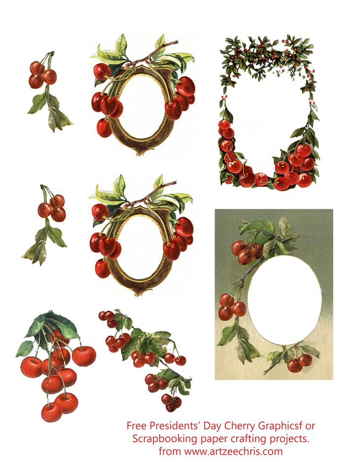 Free Presidents' Day Cherry Frames and Graphics Printables.  Use them for scrapbooking and paper crafting projects. Courtesy of www.artzeechris.com a Pinterest verified website.