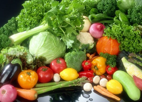Nutrition Health Articles and free diet programs with a healthy diet plan, article on nutrition with facts about hypoglycemia diet, candida diet, fatigue, slow oxidizer, Adrenal fatigue