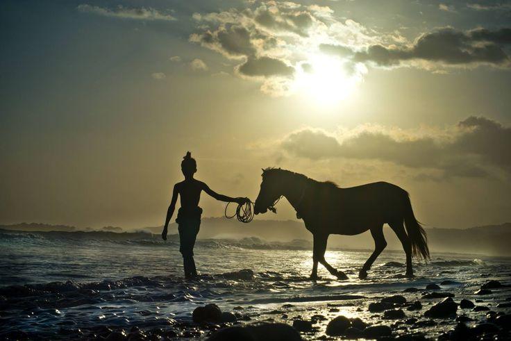Cabalgando en las playas de Indonesia.