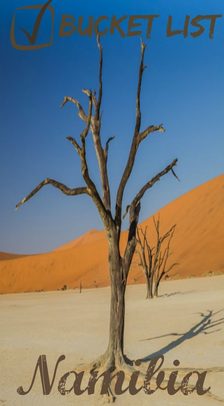 Deadvlei, Namibia! This is a UNREAL Travel Destination you have to see and it should be on your bucket list! Our experience in Deadvlei is one we will not soon forget. When people ask us about Namibia, we immediately start talking about Deadvlei and the s